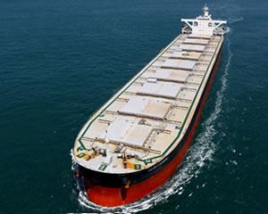 売買船グループのサービス